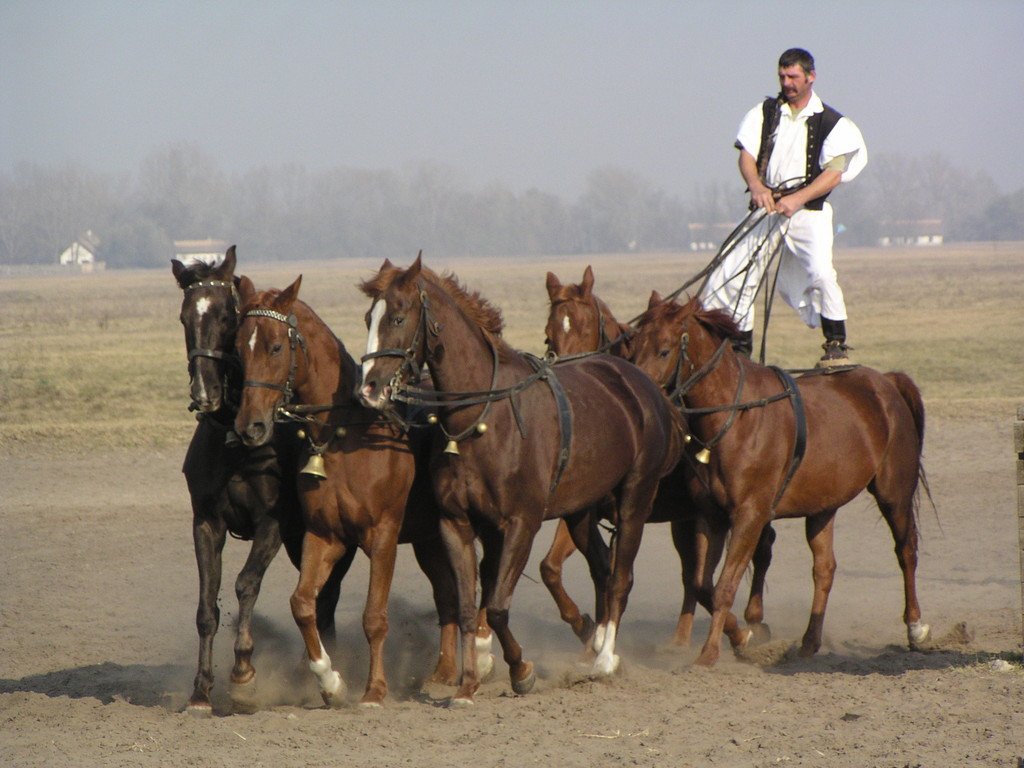 typisch ungarische musik