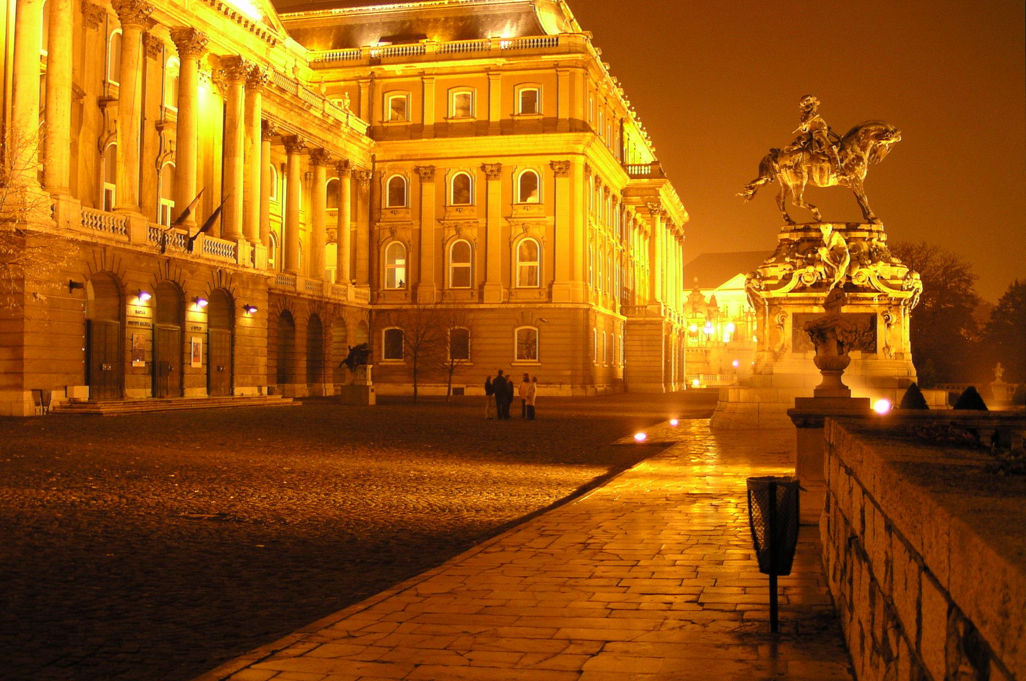 Burgpalast bei Nacht; Budapest